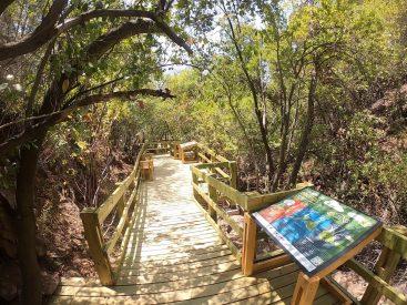 Sendero del agua y experiencia de realidad virtual: lo nuevo de la Ruta del Tricahue