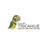 Ruta del Tricahue