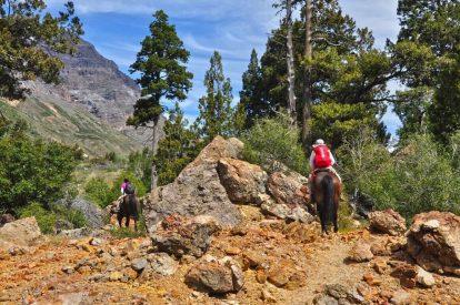 Ruta del Tricahue: el secreto mejor guardado de la región de O'Higgins