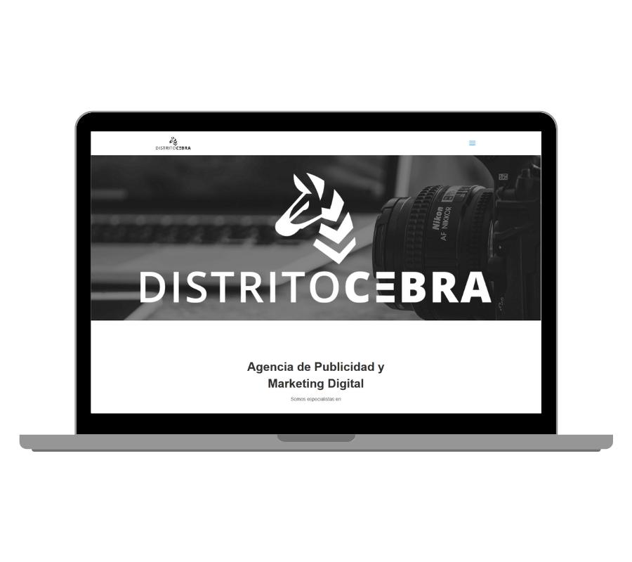 Diseño Web en Turismo Consultora