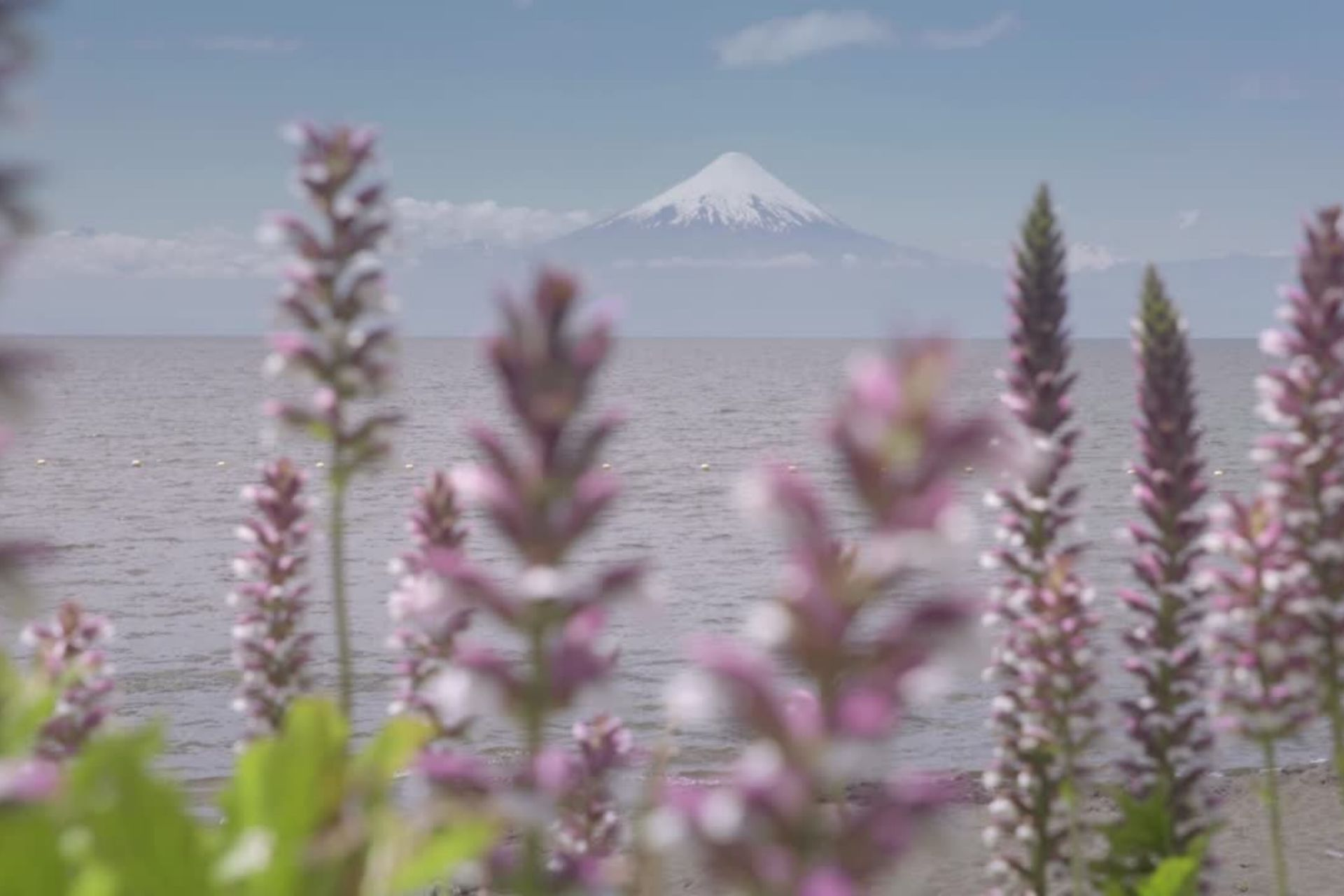 PTI Destino Creativo Lago Llanquihue: el programa que busca posicionar a la Cuenca del Lago Llanquihue como centro creativo en el sur de Chile